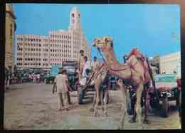 KARACHI, Pakistan - CAMEL CARTS (A Common Mode Of Goods Transport) -   Vg - Pakistan