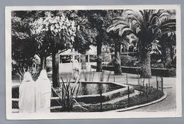 MA.- Marokko. Calablanca. Maroc. Casablanca Un Coin Du Parc Lyautey - Casablanca