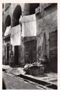20. N°53287.AJACCIO. Confection Des Palmes - Ajaccio