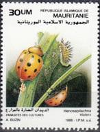 Mauritanie 1988 Michel 948 Neuf ** Cote (2001) 1.80 Euro Coccinelle Du Melon Henosepilachna Elaterii - Mauritanie (1960-...)