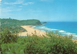 AVOCA BEACH-LOOKING NORTH TO NORTH AVOCA BEACH- VIAGGIATA    FG - Sydney