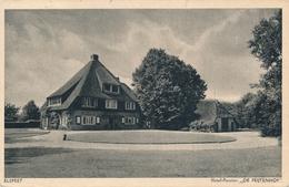 CPA - Pays-Bas - Elspeet - Hotel-Pension De Feijtenhof - Netherlands