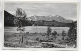 AK 0292  Klopeinersee - Verlag Schöllhorn Um 1940-50 - Klopeinersee-Orte