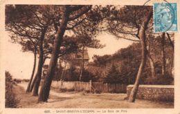 44-SAINT BREVIN L OCEAN-N°C-3674-F/0159 - Saint-Brevin-l'Océan