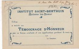 MALONNE / NAMUR / INSTITUT ST BERTHUIN / TEMOIGNAGE D HONNEUR / VERVIERS  / PALAIS DE JUSTICE - Namur