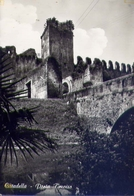 Cittadella - Porta Treviso - Formato Grande Non Viaggiata – E 13 - Treviso