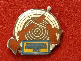 PIN'S TIR - C.O RENAULT SANDOUVILLE1992 - Pin's