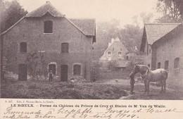 619 Roeulx Ferme Du Chateau Du Prince De Croy Et Etalon De Mr Van De Walle - Le Roeulx