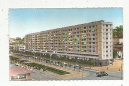 Cp , ALGERIE ,MAISON-CARREE , ALGER , Hlm Le Cours De France ,vierge - Alger