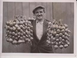 Brittany Onion Seller Vendors Arrive In London +- 16* 12 CM  Fonds Victor FORBIN (1864-1947) - Métiers