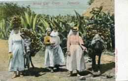 SPAIN - Canary Isles - Wood Gaf 'Erers TENERIFE - 1907(?) - Good  ALFRED DOCKS CAPE TOWN Postmark - Tenerife