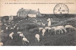 62 . N°52918.GRIS-NEZ. Poste De Douaniers Et Moutons Broutant Sur La Falaise - France