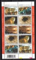 Serie  Nº 3167/71 ( 2 Series)  En Hb Belgica - Minerales