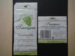 Pays D'Oc Sauvignon - Chais Beaucairois à Beaucaire - Vin De Pays D'Oc