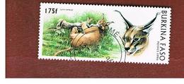 BURKINA FASO    -   MI 1439  -  1996  ANIMALS: BIG CATS (CARAKAL)  - USED ° - Burkina Faso (1984-...)