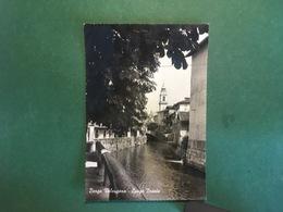 Cartolina Borgo Valsugana - Lungo Brenta - 1963 - Trento