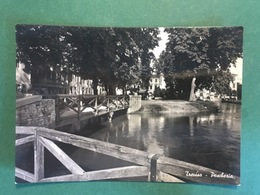 Cartolina Treviso - Peschiera  - 1953 - Treviso