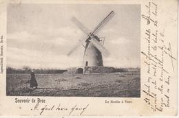 Souvenir De Bree - Le Moulin à Vent - De Windmolen - 1903 - Ingenbleek Zusters, Bree - Moulins à Vent