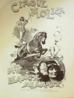 DESSIN-BORDIER-LE CIRQUE MOLIER-Mle BLANCHE ALLARTY-1870-D268 - Sin Clasificación