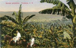 COSTA RICA(TYPE) BANANE - Costa Rica