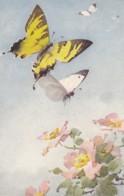 AS75 C. Klein - Butterflies And Wild Roses - Klein, Catharina