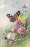 AS75 C. Klein - 3 Butterflies And Wild Flowers - Klein, Catharina