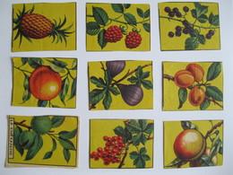 Chromo's Oude Schoolprenten Vruchten - Découpis