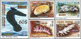 CAP VERT Mollusques 5v 2011 Neuf ** MNH - Kap Verde