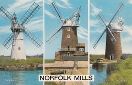 Postcard Norfolk Mills [ Windmill Interest ] My Ref  B13483 - Windmills