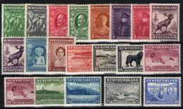 Terranova Nº 167/85. Año 1932 - Unused Stamps