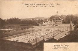 Bonne Cpa Du Pays Basque, Cultures Florales J. Bidau Fils Route De Biarritz, Serres, Magasin Rue Lormand - Bayonne
