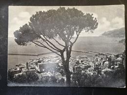 CARTOLINA ANTICA-SALERNO-IL PORTO-'900 - Postales