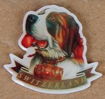 CHIEN - DOG - HUND - SAINT BERNARD - SUISSE - SWITZERLAND - SCHWEIZ - TONNEAU  -        (18) - Animales