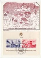 Liechtenstein Maximum Card From 1972 - Philatelic Exhibitions