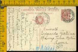 Regno Cartolina Intero Postale Brescello Roma - Storia Postale