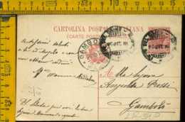Regno Cartolina Intero Postale Pieve Del Cairo Gambolò - 1900-44 Vittorio Emanuele III