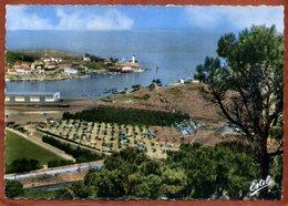 66   CPSM  De PORT-VENDRES  L'entrée Du Port Et Le Camping     Joli Plan    Très Bon état - Port Vendres
