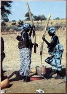 HAUTE VOLTA LE PILAGE DU MIL TRAVAIL QUOTIDIEN A SALMOSSI PRES DE MARKOYE PHOTO MARYSE BENAMOUR - Burkina Faso