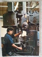 Vive Saint Éloi. - Industry