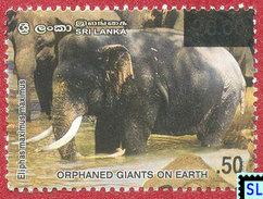 Sri Lanka Stamps 2007, Orphaned Giants On Earth, Elephants, Elephant, Fauna, Surcharge, MNH - Sri Lanka (Ceylon) (1948-...)