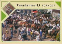 TORHOUT: Paardemarkt *St.-Pieterskerk *Stadhuis *Landbouwmuseum * Kinderboerderij *St.-Augustinustehuis * Stadspark. - Torhout