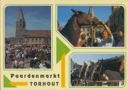 TORHOUT: Paardemarkt * St.-Pieterskerk * Kasteel Van Wijnendaele *  Vredegerecht * Station * Centrum«Ten Walle». - Torhout