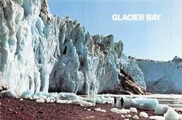 PIE.E.19-8653 :  ALASKA.  GLACIER BAY. - Etats-Unis