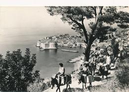 CPSM - Croatie - Dubrovnik - 1959 - Croatie