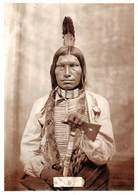 PIE.E.19-8662 : LOW DOG. XUNKA KUCIYEDAN. OGLALA SIOUX CHIEF. TERRITOIRE INDIEN. - Etats-Unis