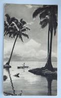 Carte Postale : Dans Le Sillage De Bougainville : TONGA, L'Ile Des Amis, 2 Timbres En 1955, édité Par Plasmarine - Tonga