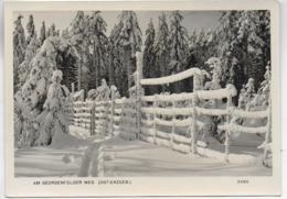 AK 0293  Winterzauber Am Georgenfelder Weg / Ostalgie , DDR Um 1958 - Altenberg
