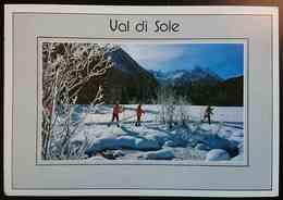 VAL DI SOLE (Trentino) - SKI - Sci Da Fondo / Cross-country Skiing-  Vg TA2 - Trento