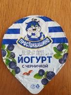 Belarus Cat  Yougurt  Top - Milk Tops (Milk Lids)