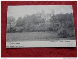 SCLAIGNEAUX  -  ANDENNE  -  Château Du Chant D'Oiseaux - Andenne